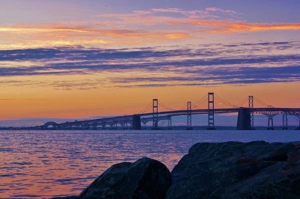 Photograph - Bay Bridge by Buddy Scott