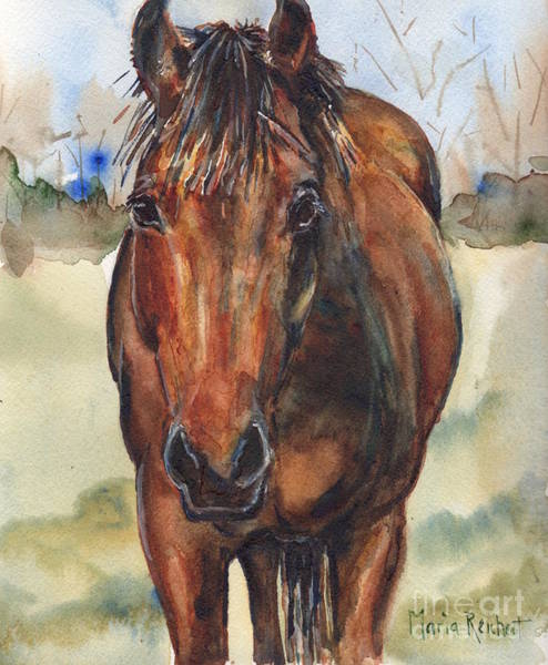 Aqha Painting - Bay Horse Painting In Watercolor by Maria's Watercolor