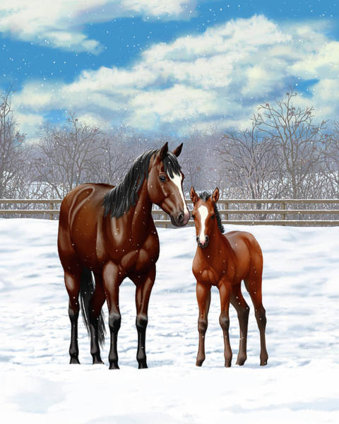 Wall Art - Painting - Bay Mare And Foal In Winter by Crista Forest