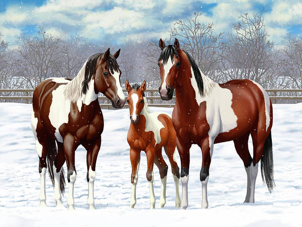 Wall Art - Painting - Bay Paint Horses In Winter by Crista Forest