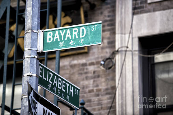 Photograph - Bayard And Elizabeth by John Rizzuto