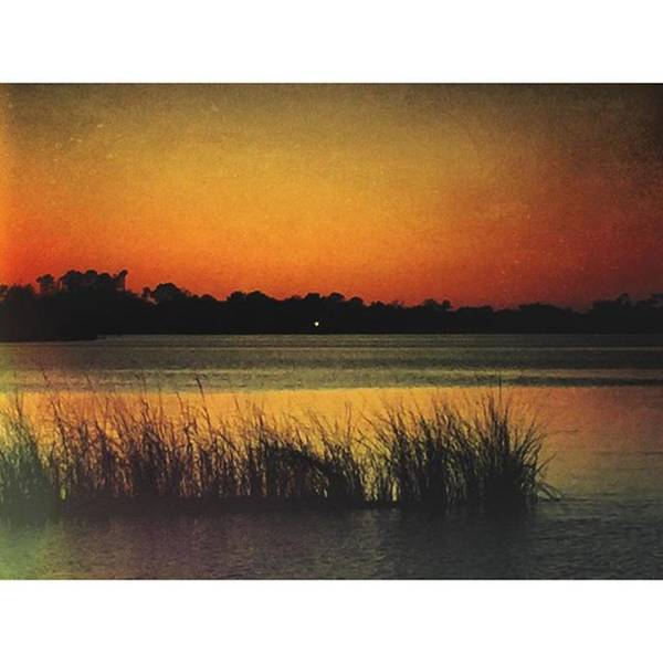 Wall Art - Photograph - Bayou Colors #sunset #oceanspringsms by Joan McCool