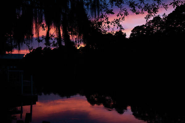 Wall Art - Photograph - Bayou Sunset by Lana Trussell