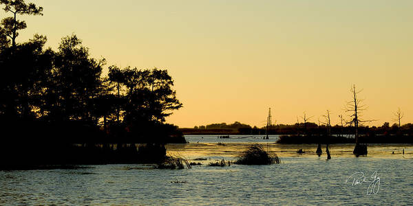 Bayou Sunset Venice Louisiana Art Print