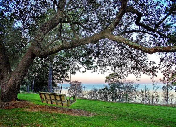 Alabama Painting - Bayview Swing Under The Tree by Michael Thomas