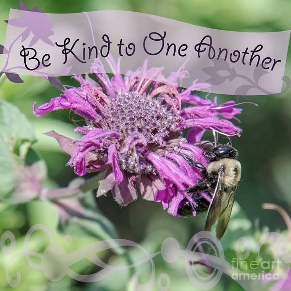 Wall Art - Photograph - Be Kind by Anita Faye