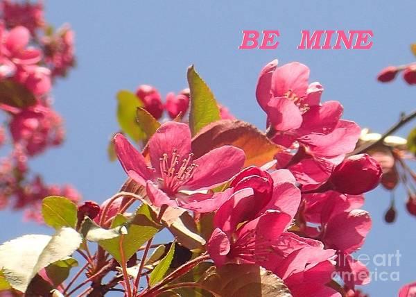 Photograph - Be Mine Cherry by Christina Verdgeline