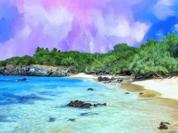 Kona Painting - Beach 69 Big Island by Dominic Piperata