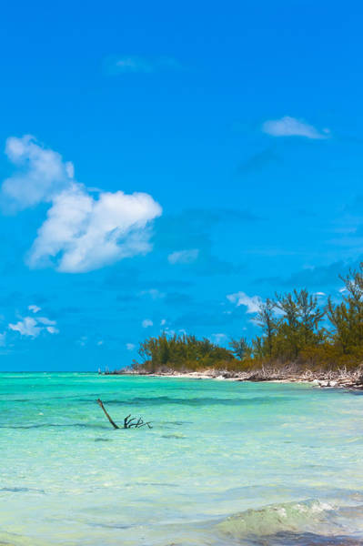 Beach At North Bimini Art Print