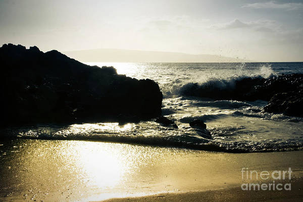 Photograph - Beach Bronze by Sharon Mau