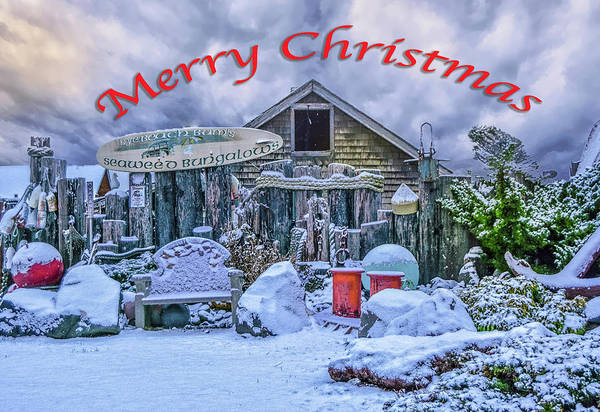 Photograph - Beach Bungalow Christmas by Bill Posner