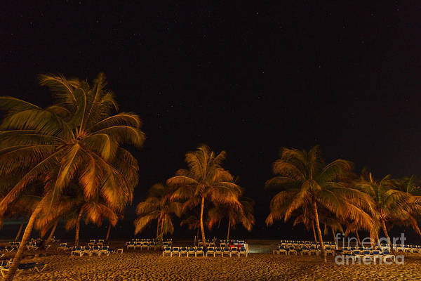 Photograph - Beach By Night by Charles Kozierok