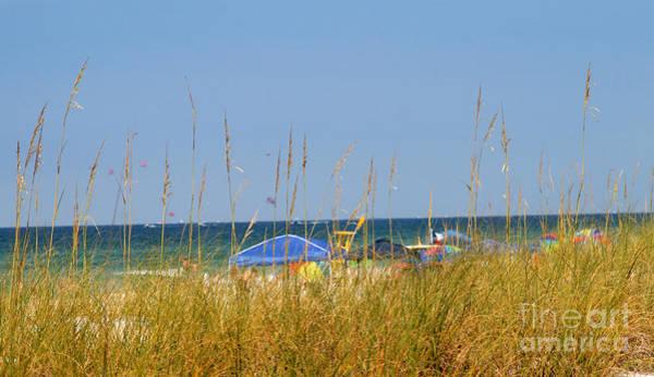 Photograph - Ocean Beach Colors by Karen Adams