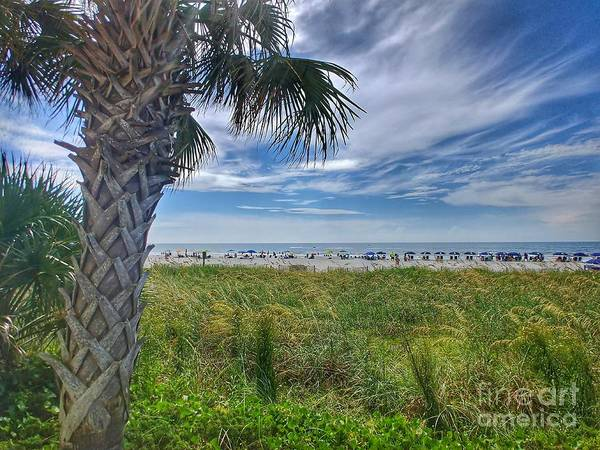 Wall Art - Photograph - Beach Days by Noel Adams