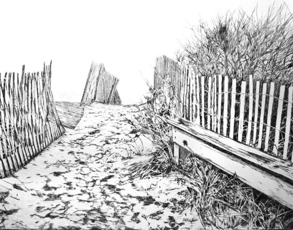 Drawing - Beach Entrance by Michele A Loftus