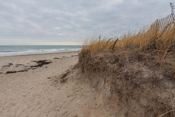 Photograph - Beach Grass At Rexhame Beach In Marshfield Massachusetts by Brian MacLean