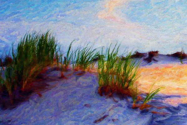 Digital Art - Beach Grass by Chuck Mountain