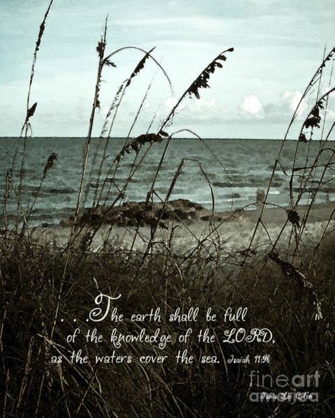 Digital Art - Beach Grass Oats Isaiah 11 by Janis Lee Colon