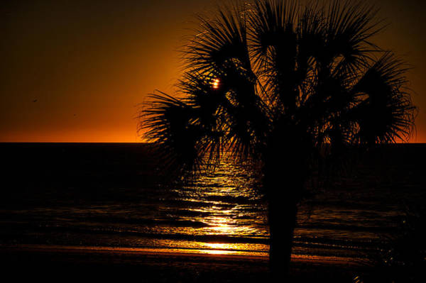 Photograph - Beach House Sunset by Penny Lisowski