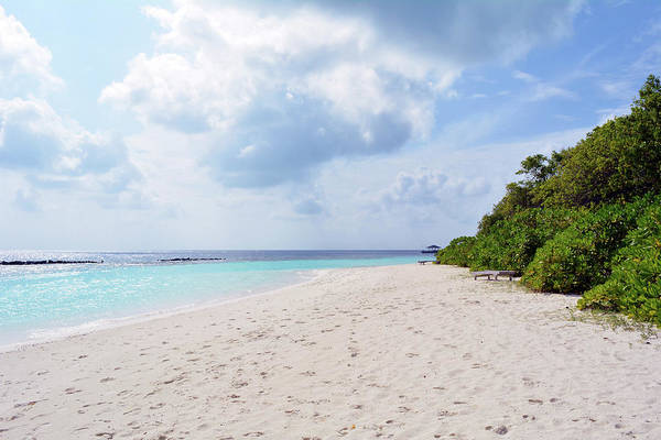 Photograph - Beach In The Maldives With Blue Clear Water And Vegetation by Oana Unciuleanu