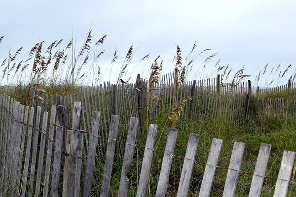 Wrightsville Beach Wall Art - Photograph - Beach Is Calling by Deborah  Crew-Johnson