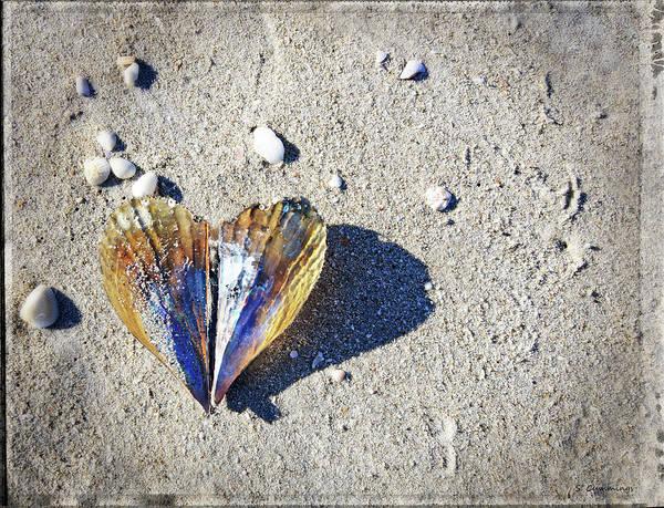 Mussel Wall Art - Photograph - Beach Love By Sharon Cummings by Sharon Cummings