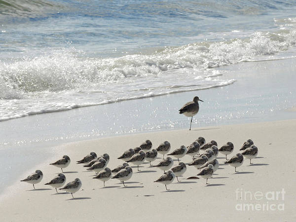 Wall Art - Photograph - Beach Mantra by Lucyna A M Green