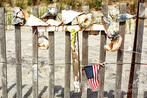 Photograph - Beach Memorial At Cape May 2008 by John Rizzuto