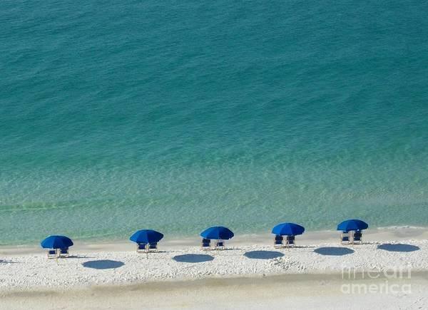 Photograph - Beach Morning by Tammie J Jordan