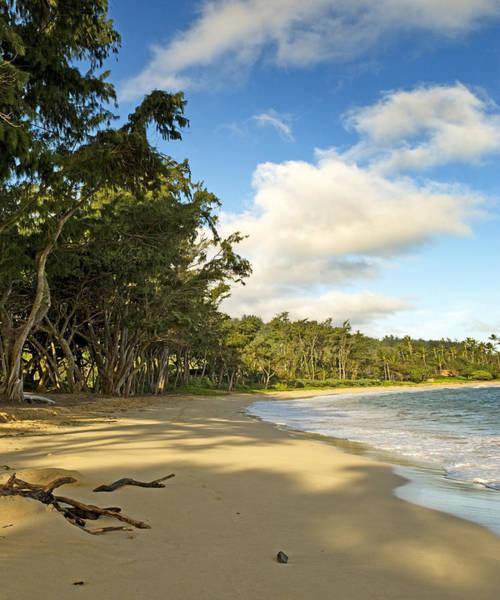 Wall Art - Photograph - Beach On Oahu Hawaii by Brendan Reals