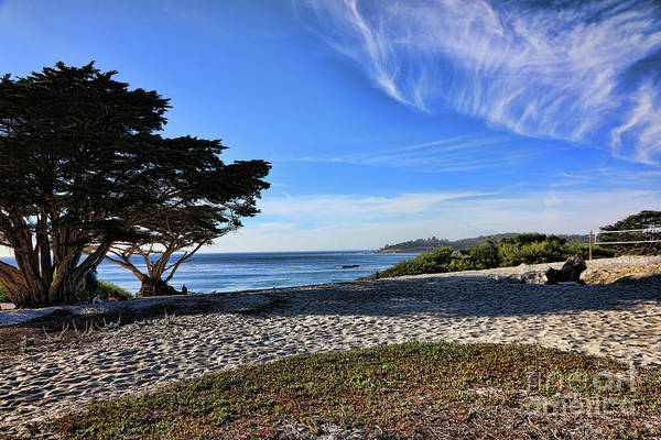 Carmel By The Sea Photograph - Beach Pacific Ocean Cypress Trees Carmel By The Sea by Chuck Kuhn