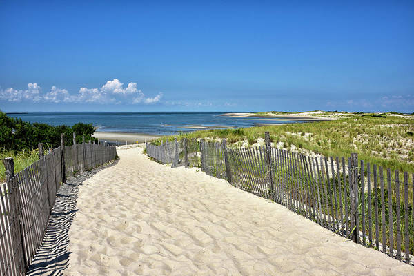 Delaware State Park Wall Art - Photograph - Beach Path At Cape Henlopen State Park - The Point - Delaware by Brendan Reals