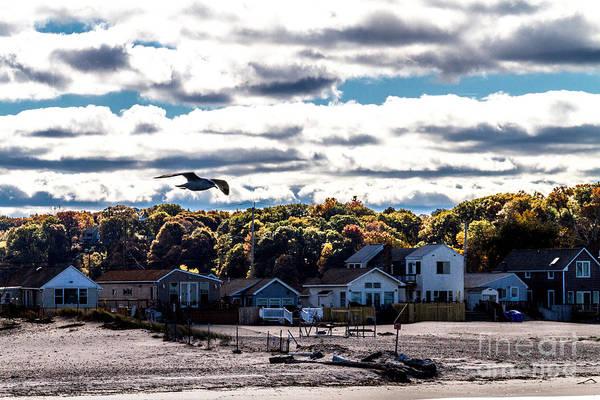 Photograph - Beach Patrol by William Norton