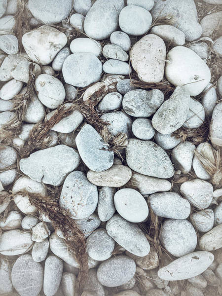 Wall Art - Photograph - Beach Pebbles Background by Tom Gowanlock