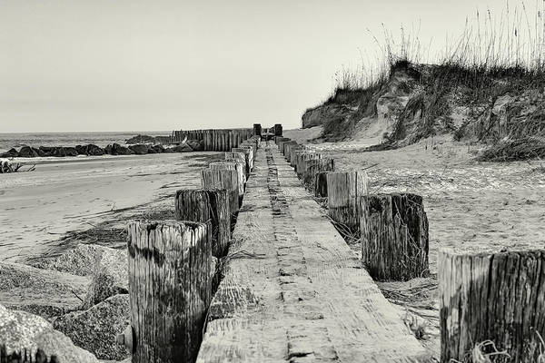 Photograph - Beach Pilings by Patricia Schaefer