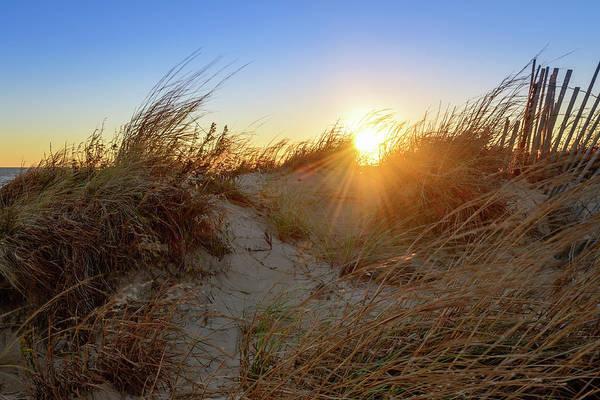 Photograph - Beach Rays by Michael Scott