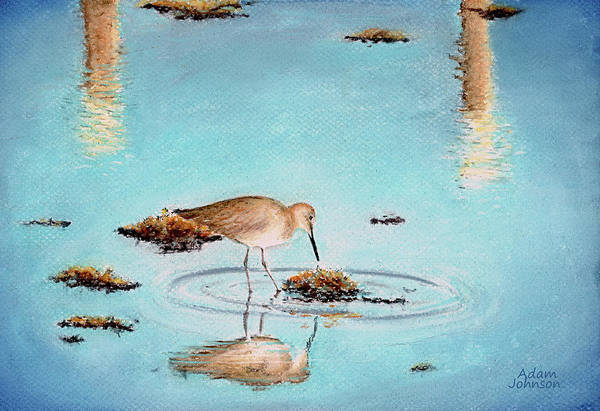 Pastel - Beach Reflection by Adam Johnson