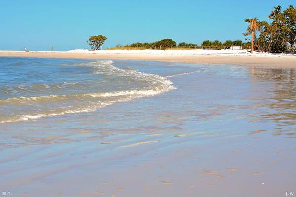 Wall Art - Photograph - Beach Scene by Lisa Wooten