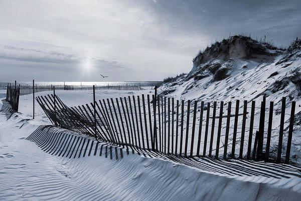 Photograph - Beach Stripes by Robin-Lee Vieira
