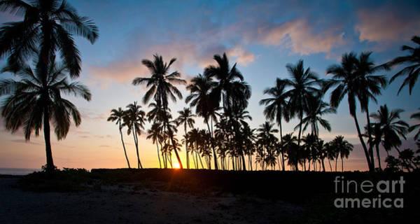 Wall Art - Photograph - Beach Sunset by Mike Reid