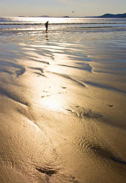 It Professional Photograph - Beachcomber by Aleck Rich Seddon
