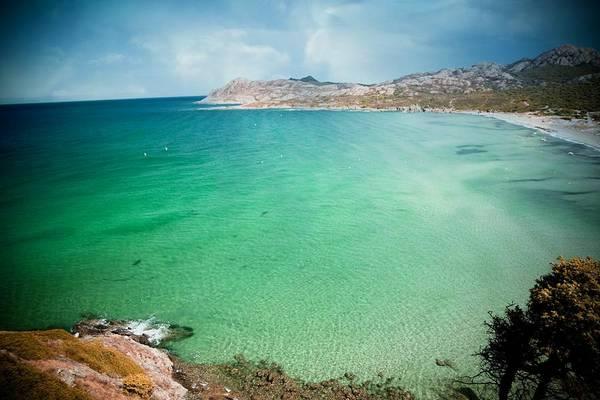Photograph - Beachcomber by Digital Art Cafe