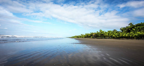 Photograph - Beaches Of Costa Rica by David Morefield