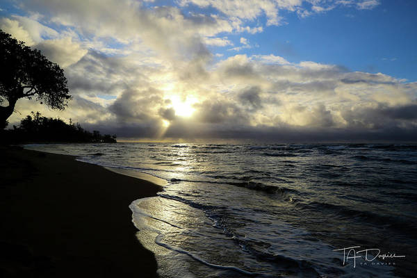 Photograph - Beachy Morning by T A Davies