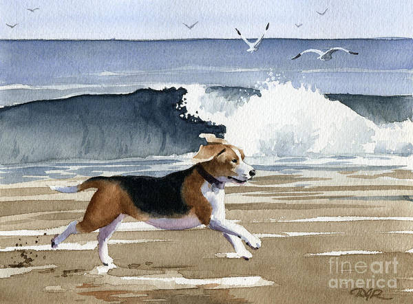 Beagle Painting - Beagle At The Beach by David Rogers