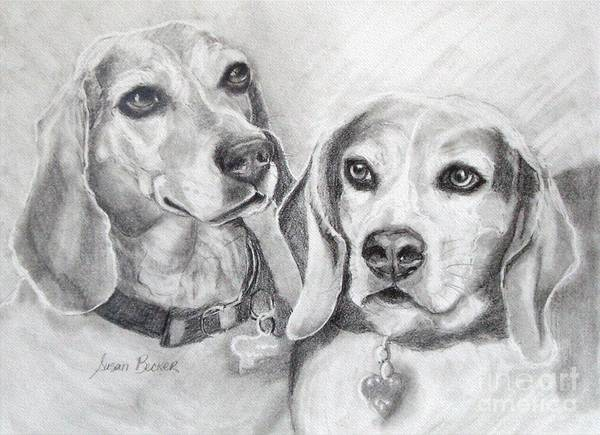 Wall Art - Drawing - Beagle Boys by Susan A Becker