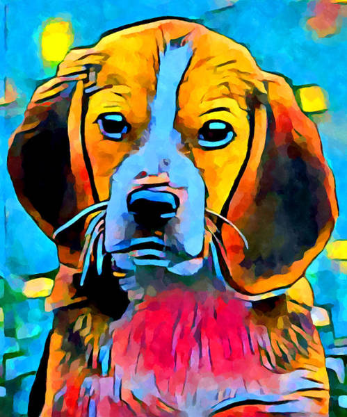 Wall Art - Painting - Beagle by Chris Butler
