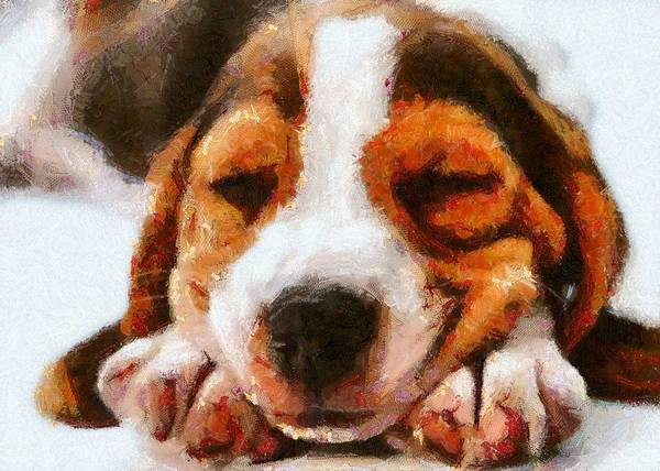 Beagle Puppy Art Print