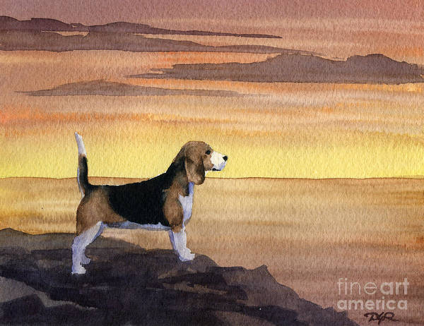 Beagle Painting - Beagle Sunset by David Rogers
