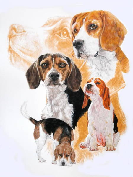 Wall Art - Mixed Media - Beagle Hound Medley by Barbara Keith